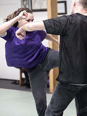 Injury Dynamics, Kicks, Liver Injury, Hand-To Hand Combat
